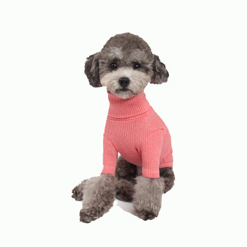 Basic Turtleneck - Pink