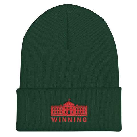 Image of WINNING Cuffed Beanie - Spruce