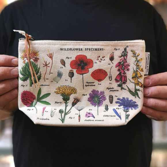 Pochette botanique - wildflower specimens