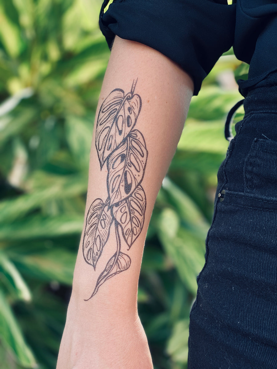 monstera vine temporary tattoo, swiss cheese vine, rare house plant tattoo