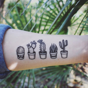 42bf18a20f036 Potted Cactus Temporary Tattoos, Succulent House Plants, Black Line  Drawing, Nature Tattoo
