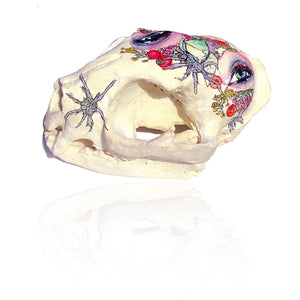 Painted Resin Skulls Series II