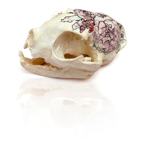 Painted Resin Skulls Series I