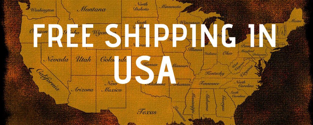 Fast and Free Shipping in USA