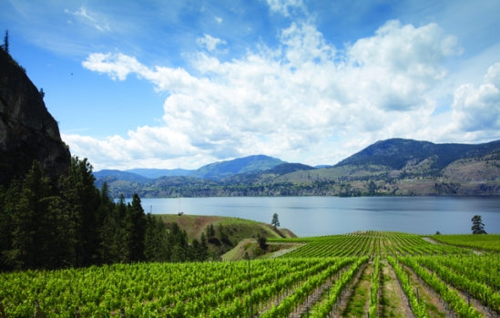 BC wineries up London presence