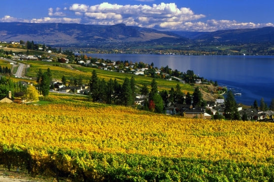 Okanagan Valley #2 Wine Region in the World!