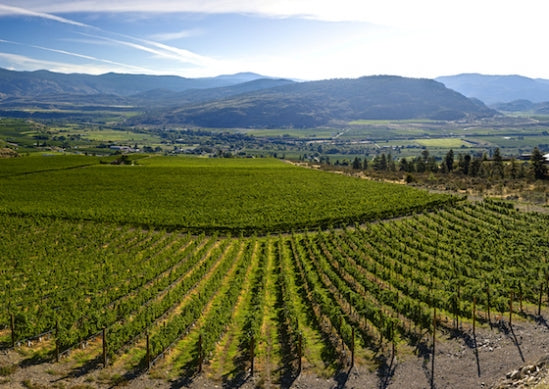 Okanagan Top 10 Wine Travel Destinations