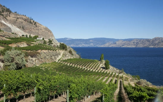 """Welcome to the New Okanagan"" by Anthony Gismondi"