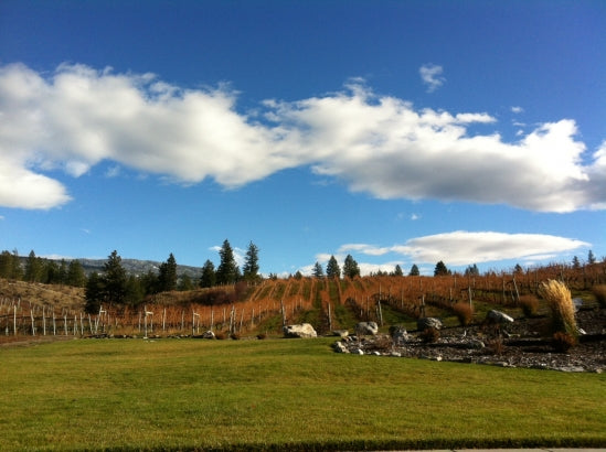 Okanagan Valley in Top 10 Wine Destinations Around the World