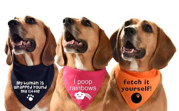 cute and funny printed designs unique artwork on dog bandanas with funny sayings UK