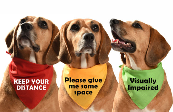 warning safety training dog bandanas i need space, blind dog, keep your distance