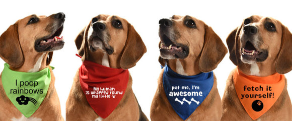 UKs top supplier of dog bandanas for wholesale and retail