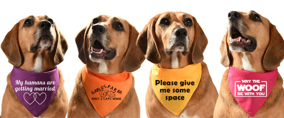 dog bandanas printed with your own branding or customised message