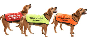 customised printed dog coats communicoat