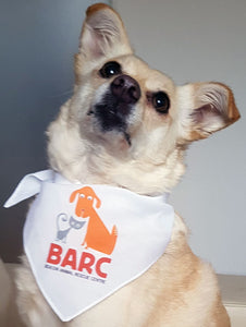 BARC Beacon Animal Rescue Centre fundraising bandana full colour print