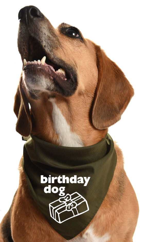 Birthday dog bandana for that special party pooch