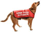 red dog coat traffic light system for aggressive or reactive dogs