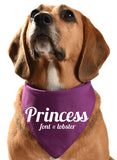 Customised dog bandana for Princess dog and puppy bandana