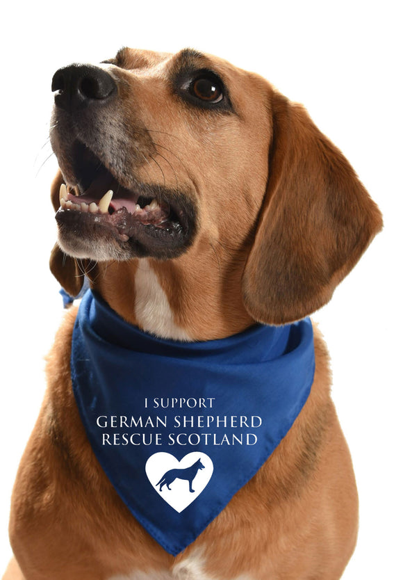 german shepherd rescue gsd scotland rescue dog bandana