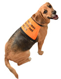 blind dog or deaf dog or dog in training or nervous dog clothing