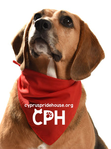 cyprus pride house dog bandana for fundraising