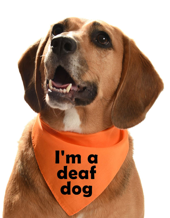 I'm a deaf dog bandana for dog training
