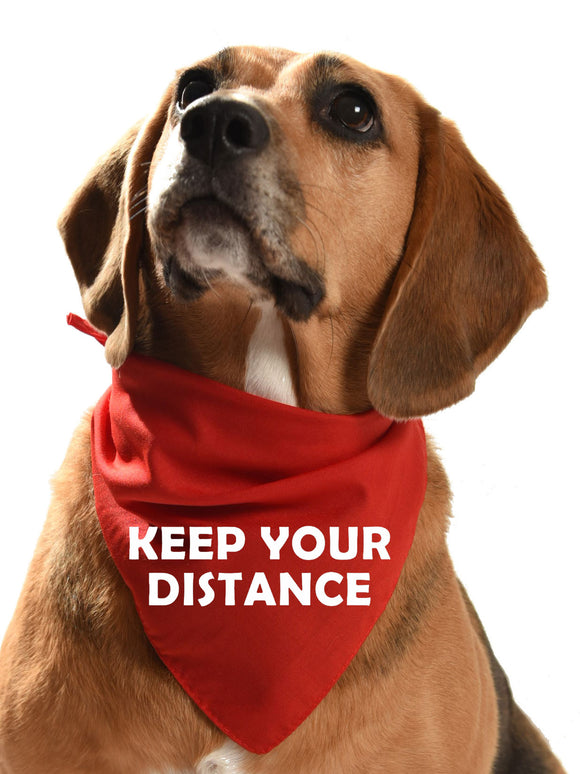 keep your distance dog bandana for fearful and reactive dogs