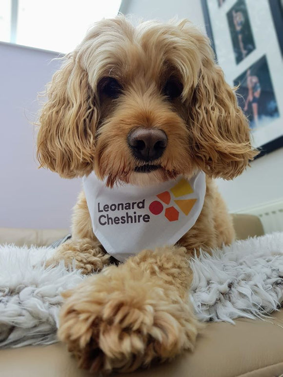 Leonard Cheshire fundraising dog bandana - NEW STYLE FULL COLOUR LOGO ON WHITE BANDANA