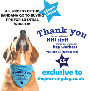 NHS and Key Worker Fundraising Dog Bandana - THANK YOU