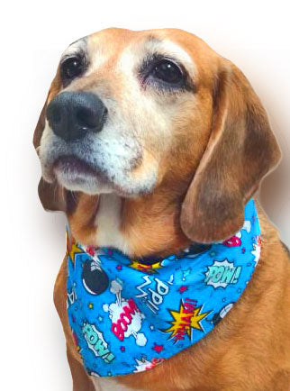 patterned dog bandanas in lovely fabrics