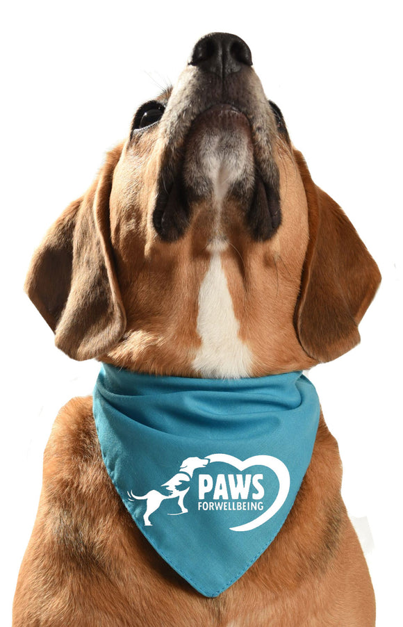 paws for wellbeing charity fundraising dog bandana