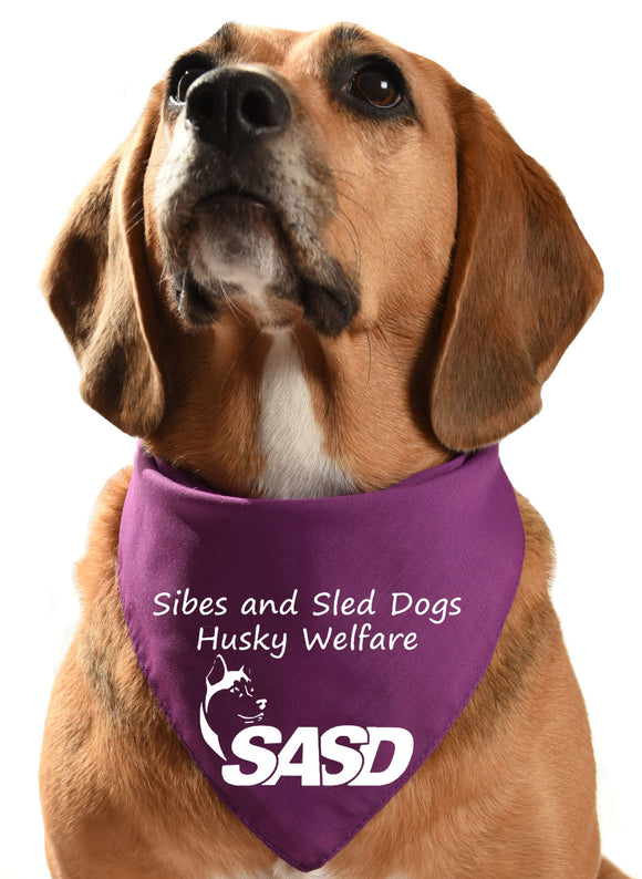 sibes and sled dogs husky welfare fundraising dog bandana