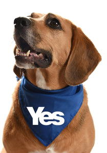 Yes scottish indendence dog scarf dog bandana neckerchief