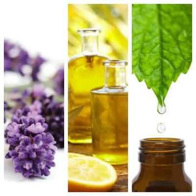 Essential Oils And Aromatherapy Supplies