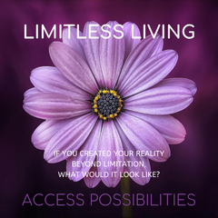 Limitless Living | Access Possibilities