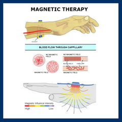Magnetic Therapy | A body-energy therapy that involves the application of magnets or magnetic fields to the body for the purpose of healing or health benefits. | Access Possibilities