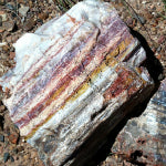 Petrified Wood Properties