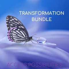 Transformation Bundle Session with Julie | Access Possibilities