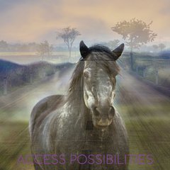 Trip Fee For Equine Services   Alternative Therapy & Equine Services   Access Possibilities