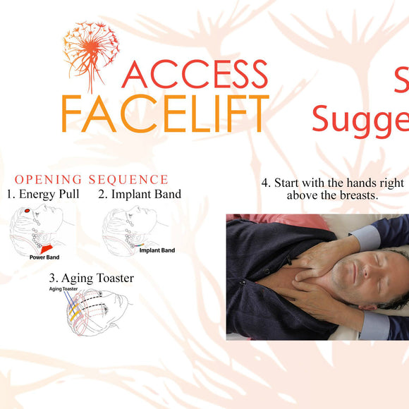 Access Facelift Laminated Reference Chart
