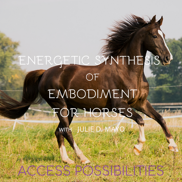 ESE For Horses | Energetic Synthesis Of Embodiment Session For Equines With Julie D. Mayo | Access Possibilities