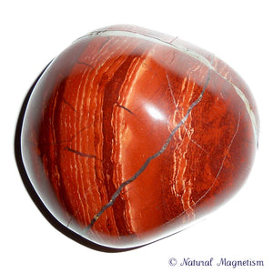 Snakeskin Jasper Hand Polished Massage Therapy Stone