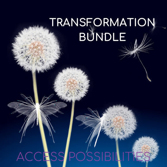 Transformation Bundle Session with Julie D. Mayo | Access Possibilities