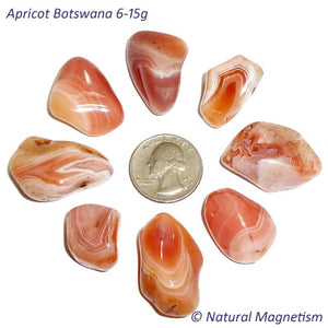 Medium Apricot Botswana Agate Tumbled Stones From Africa
