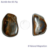 Bumble Bee Tumbled Stones 66-75 grams