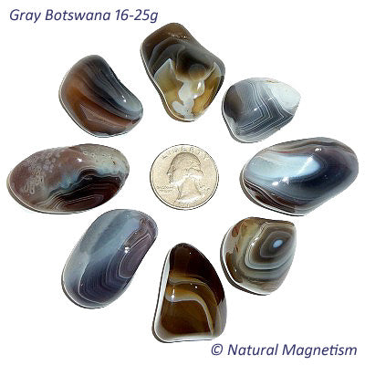 Large Gray Botswana Agate Tumbled Stones From Africa