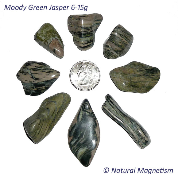 Medium Moody Green Jasper Tumbled Stones From Arizona AKA Zebra Jasper