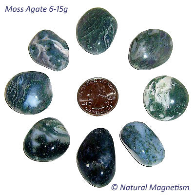 Medium Moss Agate Tumbled Stones