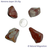 X-Large Noreena Jasper Tumbled Stones From Australia