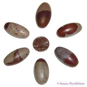 Shiva Lingam Sacred Stones From India - 1-2 Inch
